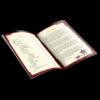 013_Book_Mockup_V2